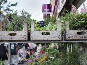 Straßenszene Schanzenviertel; Schulterblatt Blumengeschäft