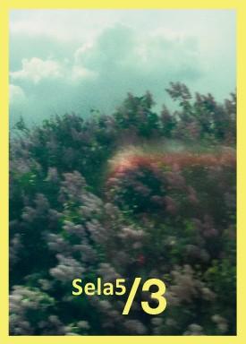 Flyer zur Fotoausstellung Sela5/3 in Berlin; gelbumrandetes Foto mit Büschen und Himmel, sehr körnige Aufnahme, düster und chaotisch