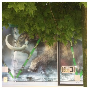 eine Mammut-Zeichnung auf einem kleinen Transporter, davor ein Baum; merkwürdiges Urwaldfeeling